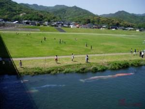 20160504川のこいのぼり.jpg